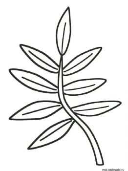 leaves-coloring-pages-44