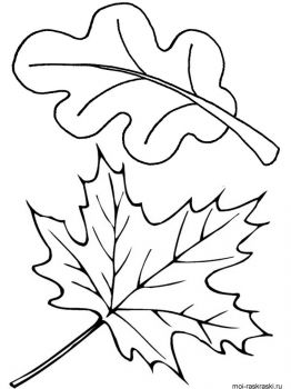 leaves-coloring-pages-47