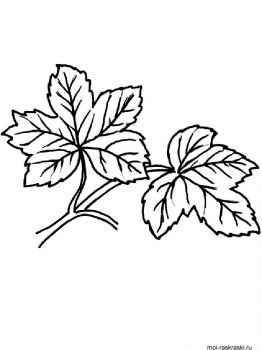 leaves-coloring-pages-49