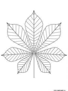 leaves-coloring-pages-51