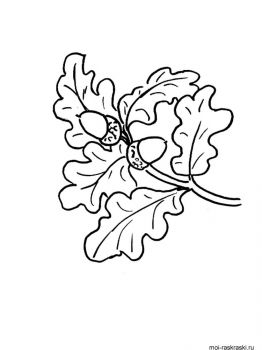 leaves-coloring-pages-52