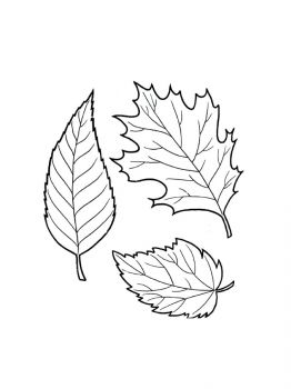 leaves-coloring-pages-9