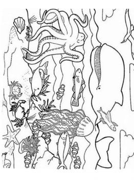 ocean-coloring-pages-4