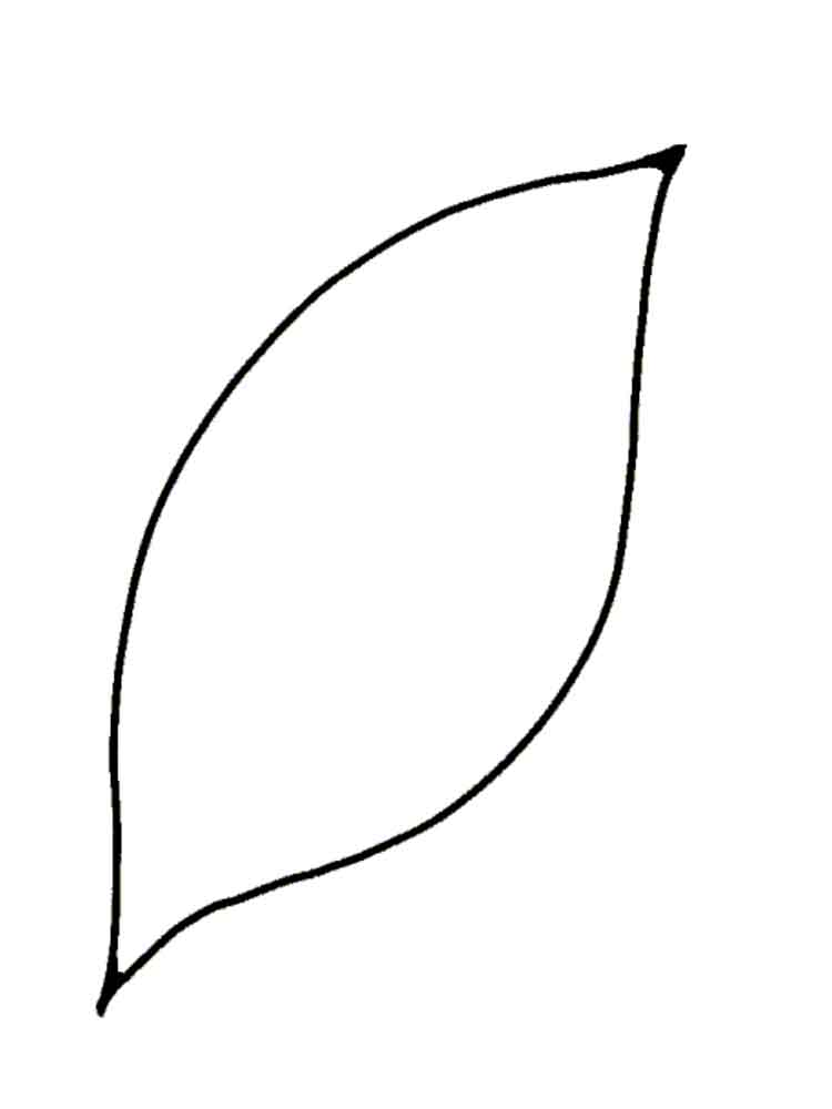 malvorlagen blütenblätter  ausmalbilder kostenlos zum