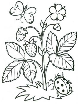 plants-coloring-pages-12