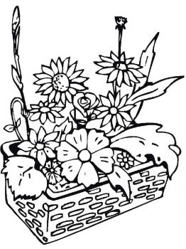 plants-coloring-pages-14