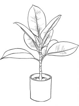 plants-coloring-pages-17