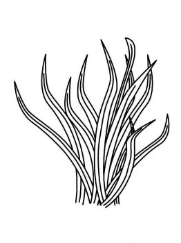 plants-coloring-pages-21