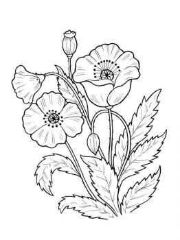 plants-coloring-pages-25