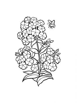 plants-coloring-pages-5