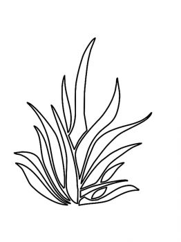 plants-coloring-pages-7