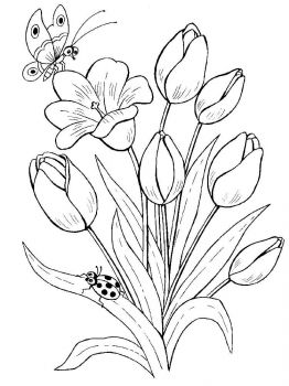 plants-coloring-pages-9