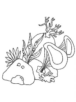 seaweed-coloring-pages-10