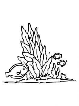 seaweed-coloring-pages-5