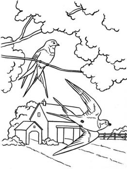 spring-coloring-pages-17