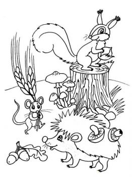 spring-coloring-pages-4