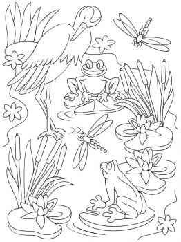 swamp-coloring-pages-18