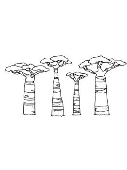 baobab-tree-coloring-pages-12