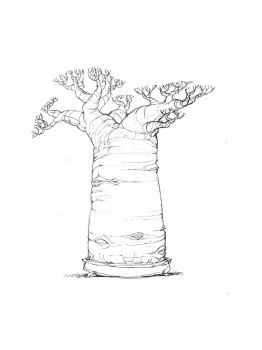 baobab-tree-coloring-pages-14