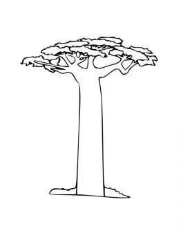 baobab-tree-coloring-pages-9