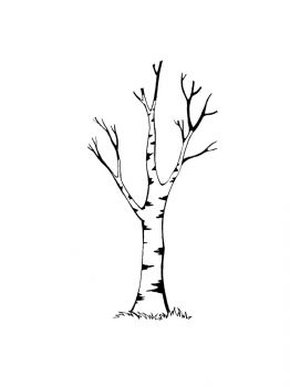 birch-tree-coloring-pages-16