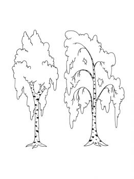 birch-tree-coloring-pages-21