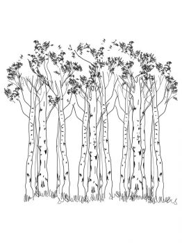 birch-tree-coloring-pages-22