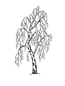 birch-tree-coloring-pages-24
