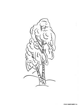 birch-tree-coloring-pages-9