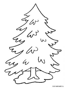 fir-tree-coloring-pages-10