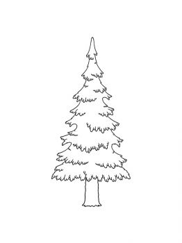 fir-tree-coloring-pages-16