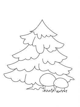fir-tree-coloring-pages-18