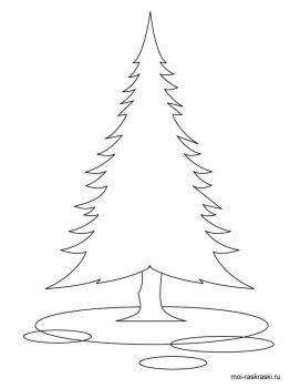 fir-tree-coloring-pages-5