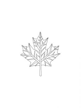 maple-tree-coloring-pages-13
