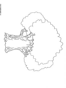 oak-tree-coloring-pages-10