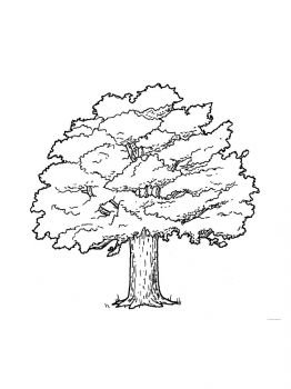 oak-tree-coloring-pages-18
