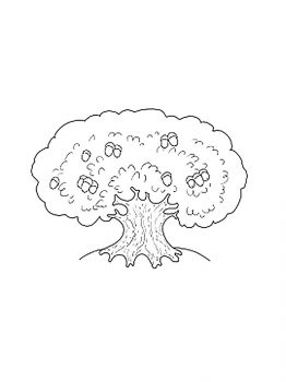 oak-tree-coloring-pages-29