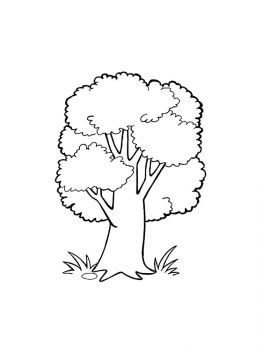 oak-tree-coloring-pages-30