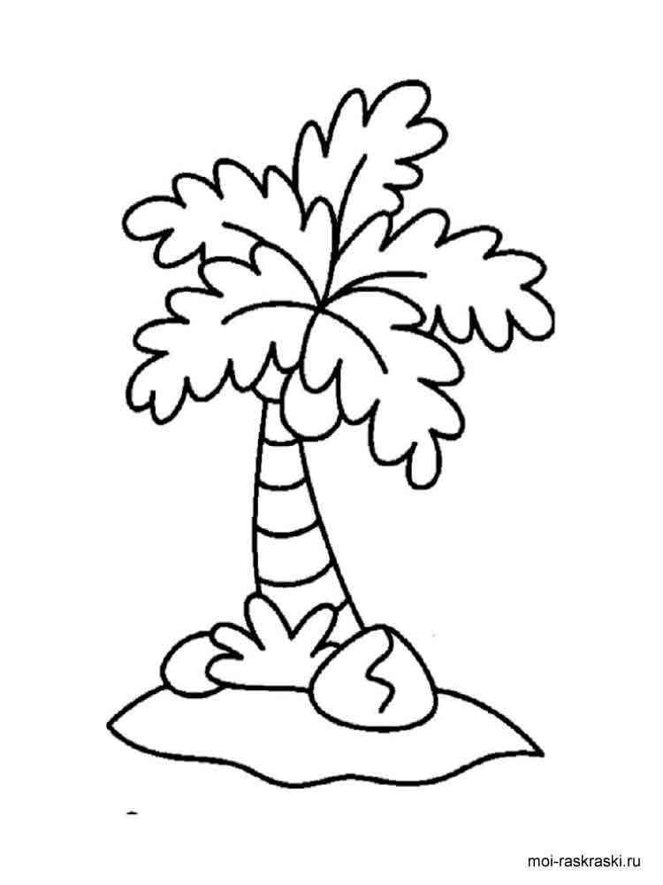 malvorlagen palme  ausmalbilder kostenlos zum ausdrucken