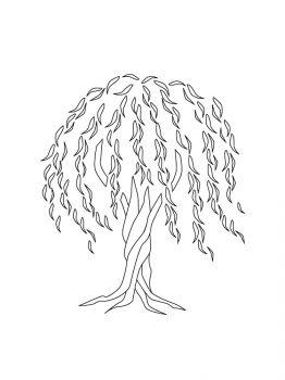 willow-tree-coloring-pages-12
