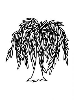 willow-tree-coloring-pages-16