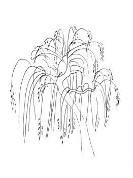 willow-tree-coloring-pages-8